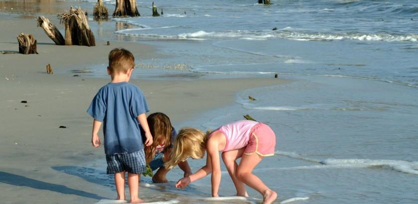 pegar-concha-na-praia