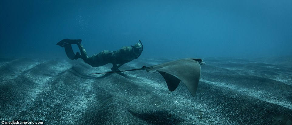 roupa-de-mergulho-invisivel-para-os-peixes-e-tubaroes_06