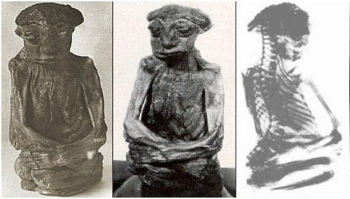 cadaveres-mais-estranhos-08-mumia