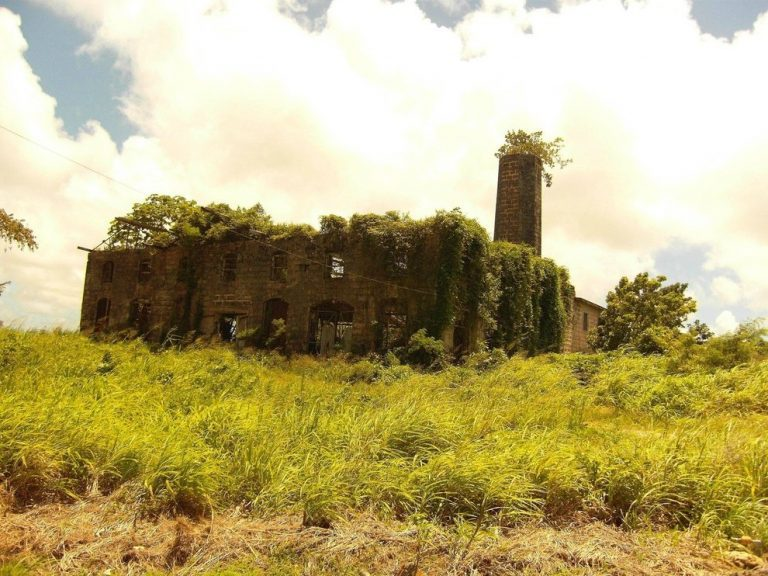 lugares-abandonados-dominados-pela-natureza_05