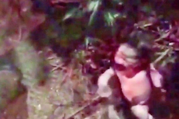 formigas-se-alimentam-de-bebe_1