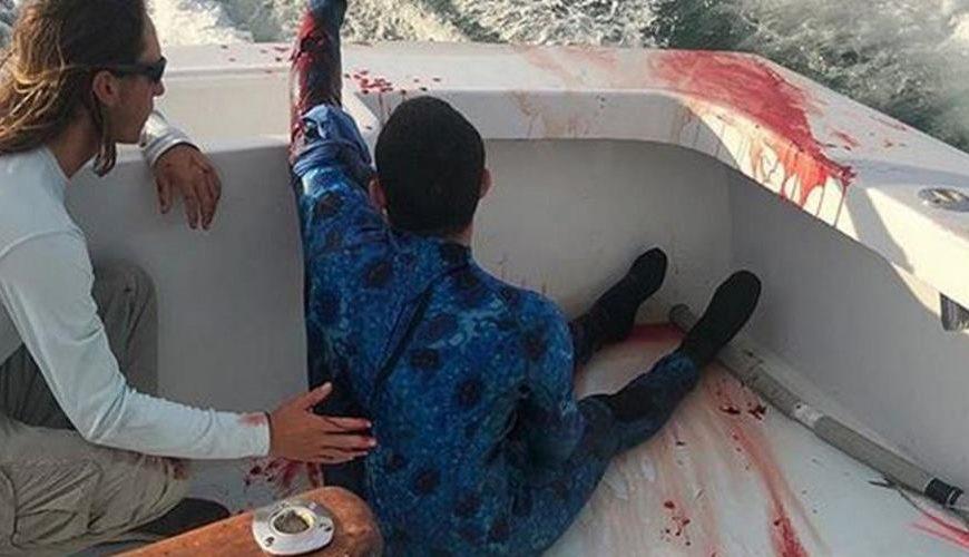Vídeo: mergulhador é atacado por tubarão e pescadores o socorrem