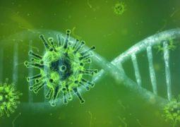 Coronavírus sofre nova mutação e surge variante ligada ao aumento de casos de Covid-19 na Califórnia